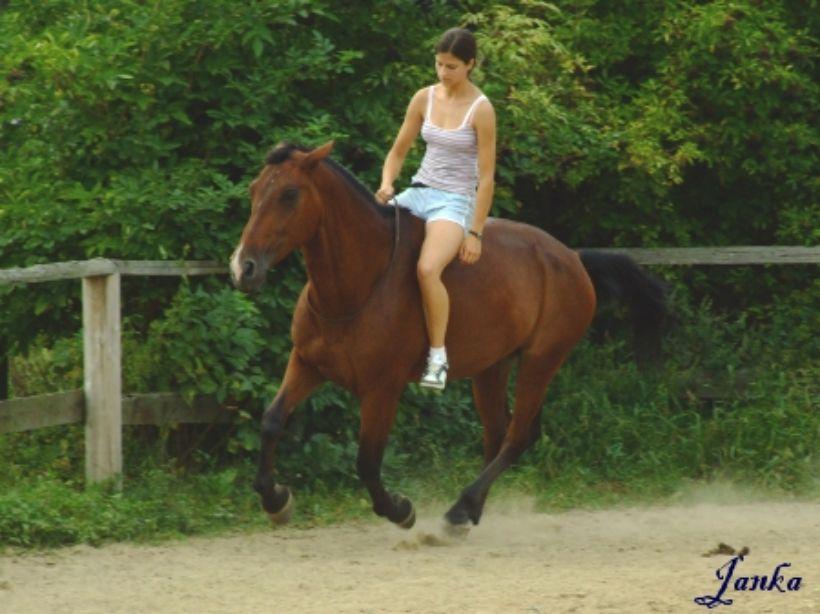 Jazdenie na koni je liek pre telo i dušu
