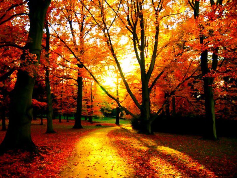 Čarokrásna jeseň s cvičením v Roháčoch